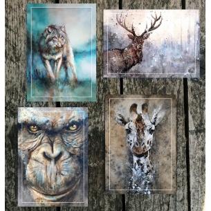Lot de 4 cartes Sandrot