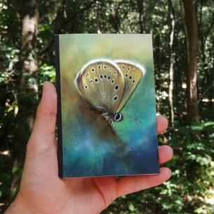 Carnet de croquis papillon